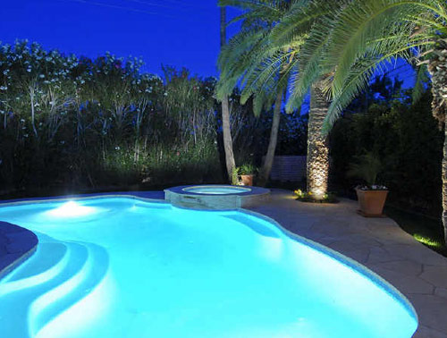 Well Lit Florida Pool w/ Palm Trees