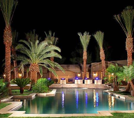 Miami Swimming Pool w/ Palm Trees